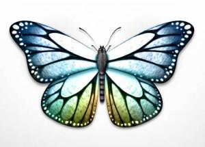 Pour la fête des mères, bricoler un joli papillon à mots doux